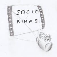 Sociokinas