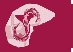 http://sociologai.lt/wp-content/uploads/2012/06/vdu-sesija-logo.png
